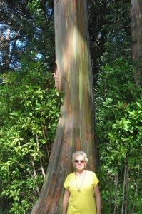 Kundin vor Regenbogen Eukalyptus