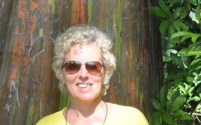 Ich denke fast jeden Tag an Hawai'i… und die Grauwale in der Baja